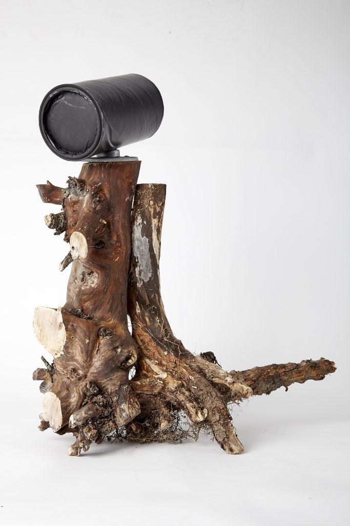 Pinhole Camera Golem